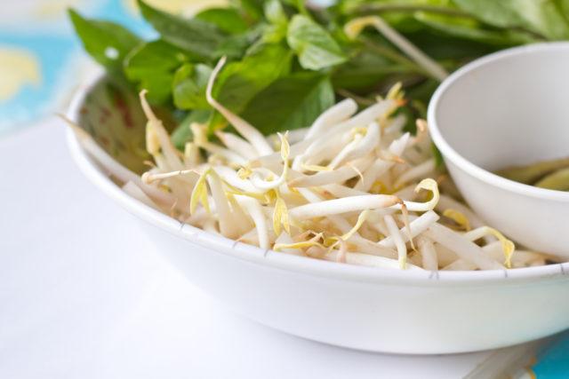 gérmen de soja no prato contra a menopausa