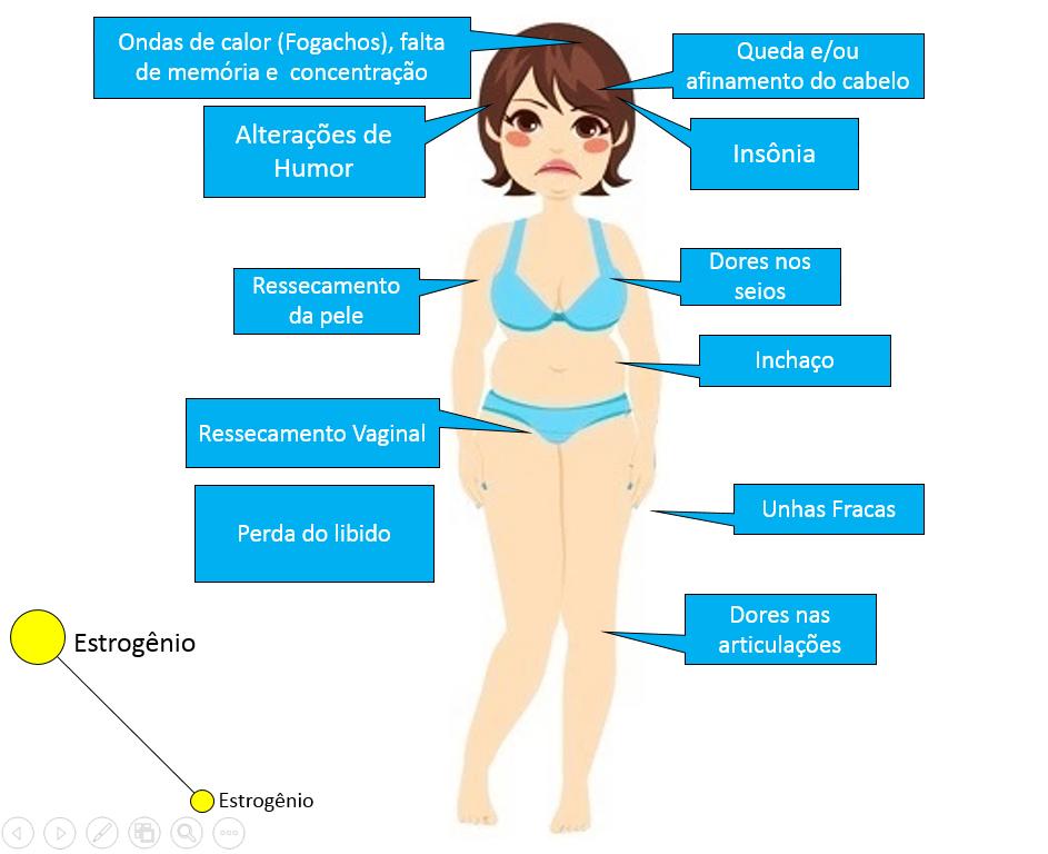 estrogenio-perda-menopausa