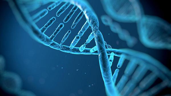 genetica-e-textura-capilar