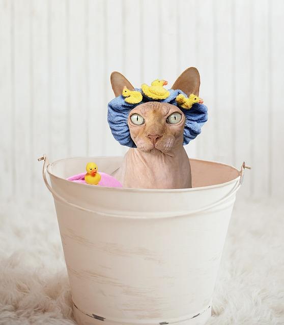 banho-com-touca-no-inverno