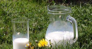 Por que tomar leite