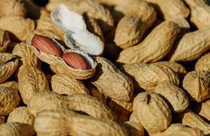 beneficios-do-amendoim