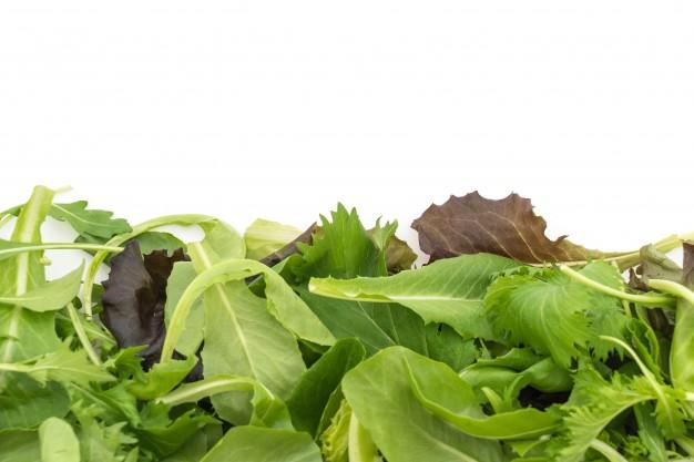 salada-rucula