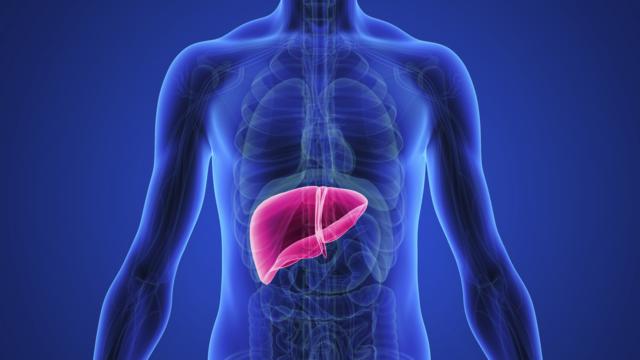 hepatite-autoimune