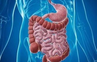sindrome-do-intestino-irritavel