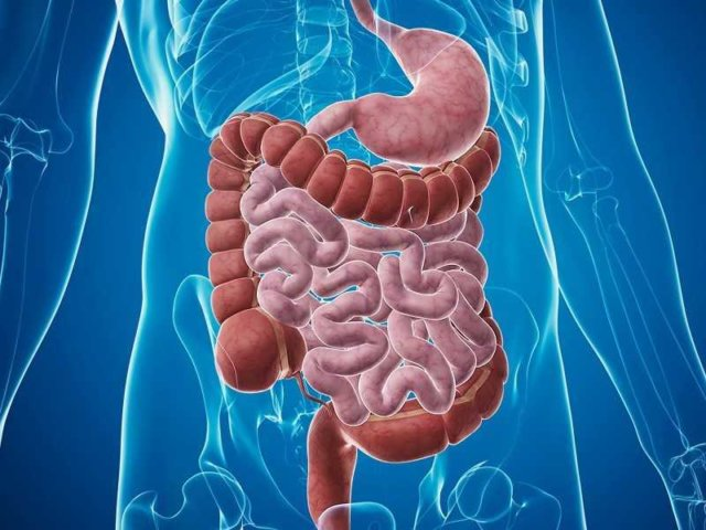 sindrome-do-intestino-irritavel