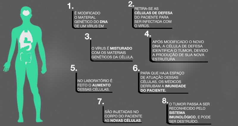 Infográfico do passo a passo da aplicação da técnica CART-Cell – Créditos: Saudável e Feliz.